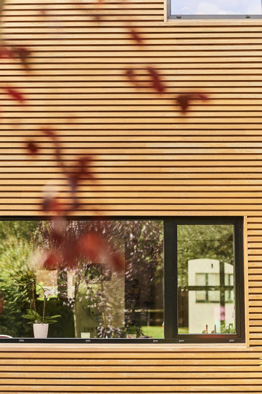 photographie d'un détail de la façade jardin de la maison Van Becelaere